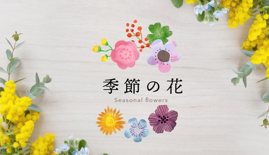 季節の花バナー